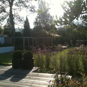 Decking overlooking lawn and pergola